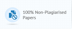 100% non-plagiarised papers